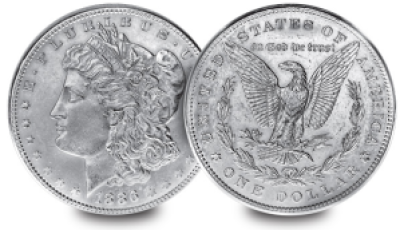 1886 morgan dollar - The coin every US collector owns